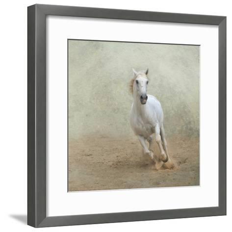 White Lusitano Horse Galloping-Christiana Stawski-Framed Art Print