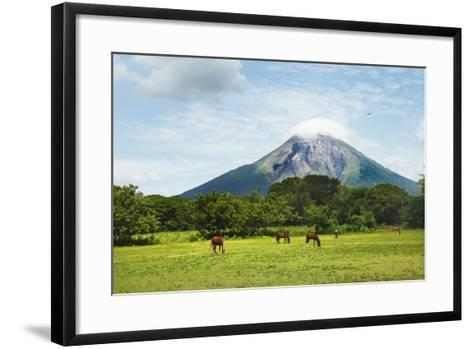 Concepcion Volcano with Grazing Horses-Paul Taylor-Framed Art Print