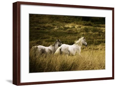 Colorado Horses-Mary Hockenbery-Framed Art Print