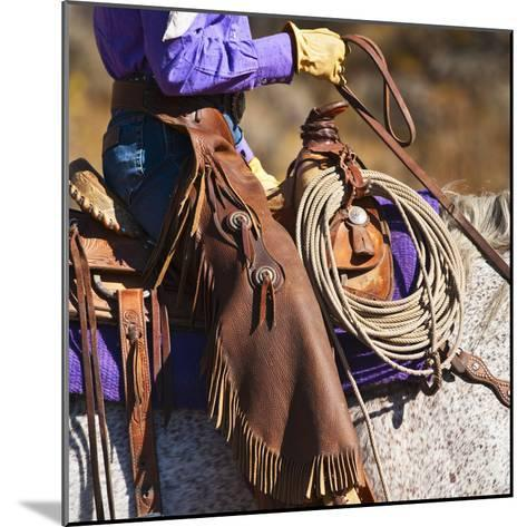 Cowgirl-Tetra Images-Mounted Photographic Print