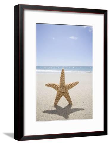 Usa, Massachusetts, Cape Cod, Nantucket, close up of Starfish on Sand-Chris Hackett-Framed Art Print