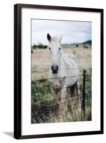 White Horse-Rafael Elias-Framed Art Print