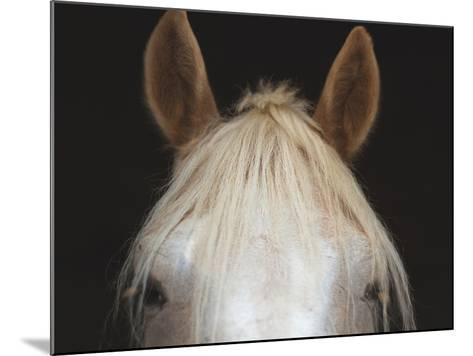 White-Carlo Alberto Danna-Mounted Photographic Print