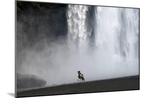 Icelandic Pony at Skogarfoss Waterfall-David Yarrow Photography-Mounted Photographic Print