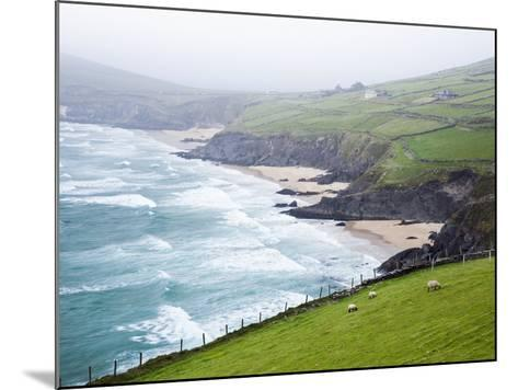 Beaches at Slea Head on Dingle Peninsula-Jorg Greuel-Mounted Photographic Print