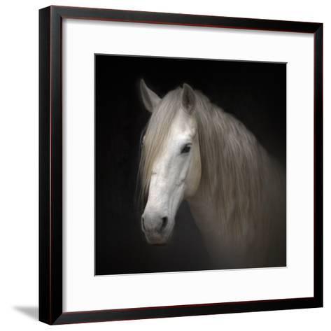 White Horse on Black-Christiana Stawski-Framed Art Print