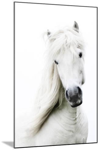 Snowhite-Gigja Einarsdottir-Mounted Photographic Print