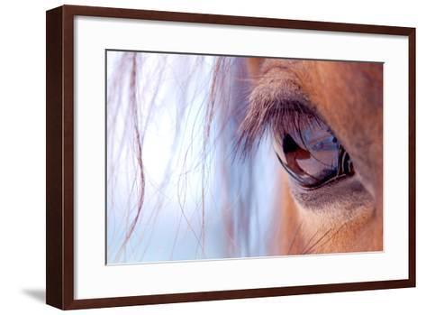 Macro of Horse Eye-Anne Louise MacDonald-Framed Art Print