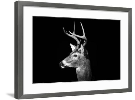 Buck in Black and White-Malcolm MacGregor-Framed Art Print