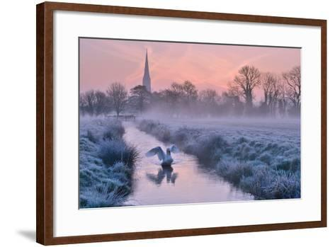Salisbury Water Meadows-Andreas Jones-Framed Art Print