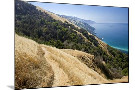Coastal Trail, along the Pacific Ocean.-Kodiak Greenwood-Mounted Photographic Print