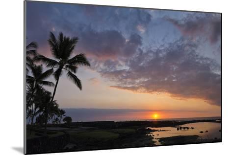 Panorama Sunset with Palms, Keauhou, Hawaii-Alvis Upitis-Mounted Photographic Print