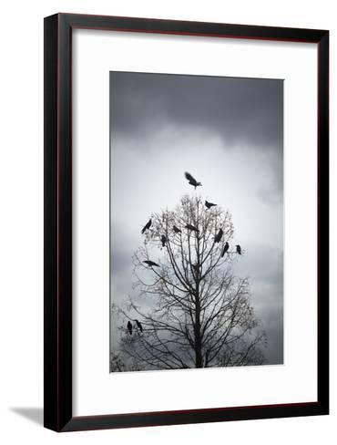 A Tree in Which Many Crows Have Rest-Hiroshi Watanabe-Framed Art Print