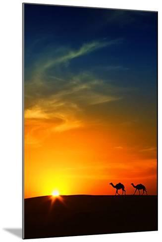 Silhouette of Camels at Sunset,Saudi Arabia-I hope you like my photos-Mounted Photographic Print