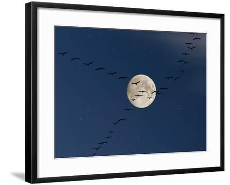 Cranes Flying to Moon-Sebastian Schneider-Framed Art Print