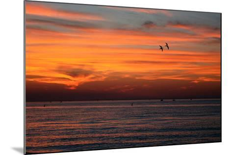 Dreams that Fly Away-fahid chowdhury-Mounted Photographic Print