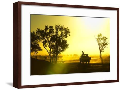 Silhouetted Cattle Muster at Sunset, Armraynald Station.-Johnny Haglund-Framed Art Print