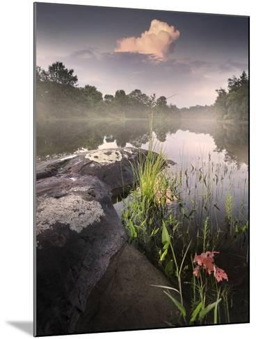 Foggy Sunset beside a Lake-Tyler Gray-Mounted Photographic Print