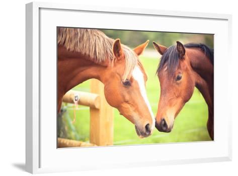 Two Horse-Sasha Bell-Framed Art Print