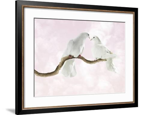 Two Doves Looking at Each Other against Pink Sky-Michael Blann-Framed Art Print