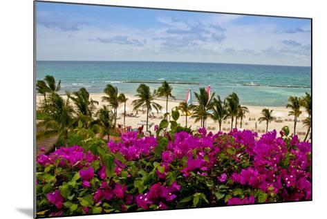Ocean View, Playa Del Carmen, Quintana Roo-Steve Bly-Mounted Photographic Print