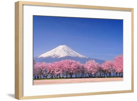 Fuji and Sakura-Peerapat Tandavanitj-Framed Art Print
