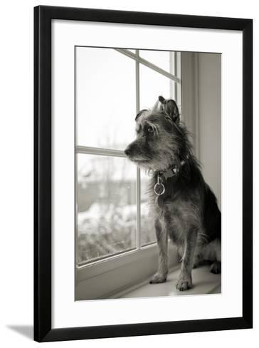 Looking Out-Steve K Photography-Framed Art Print