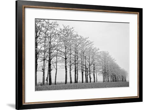 Trees in Row-michaeliao27-Framed Art Print