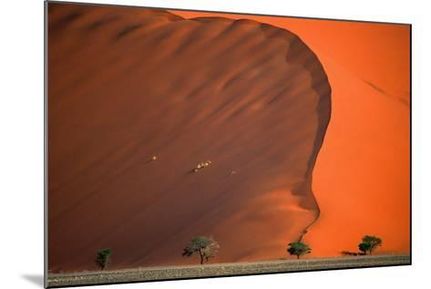 Namib Desert-Vittorio Ricci - Italy-Mounted Photographic Print