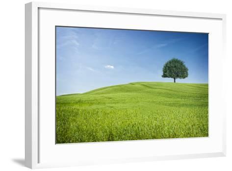 Tuscan Hills-www.andreakamal.com-Framed Art Print
