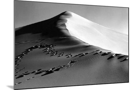 Death Valley Dune-Three Lions-Mounted Photographic Print