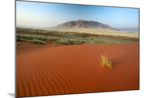Namib Desert, Namibia-Ben Cranke-Mounted Photographic Print