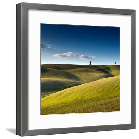 Cypress Trees on Top of Rolling Field and Blue Sky-Michele Berti-Framed Art Print