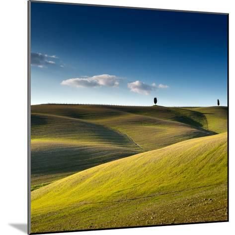 Cypress Trees on Top of Rolling Field and Blue Sky-Michele Berti-Mounted Photographic Print