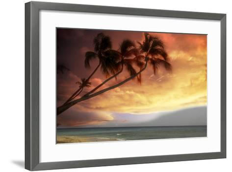 Tropical Sunset-Lyle Leduc-Framed Art Print