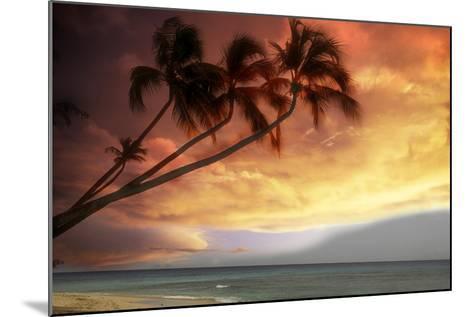 Tropical Sunset-Lyle Leduc-Mounted Photographic Print