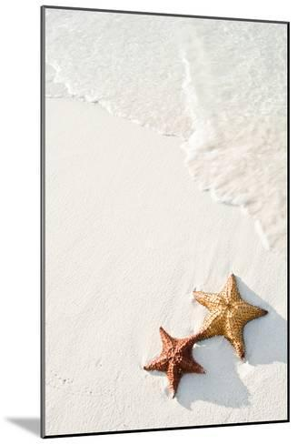 Starfish on Tropical Beach-Mehmed Zelkovic-Mounted Photographic Print
