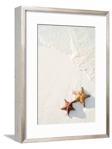 Starfish on Tropical Beach-Mehmed Zelkovic-Framed Art Print