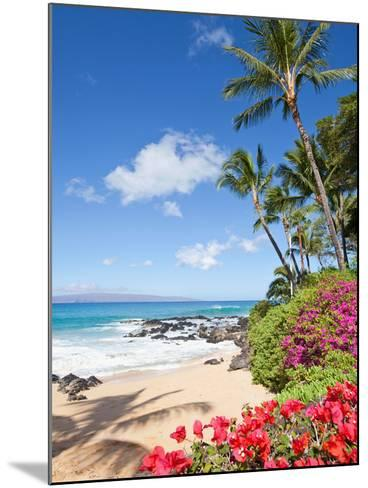 Tropical Beach-M Swiet Productions-Mounted Photographic Print