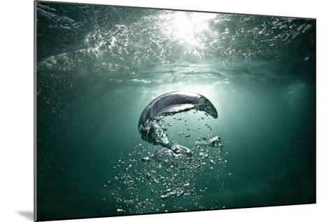 Underwater Air Bubbles Rise to the Surface.-Mark Tipple-Mounted Photographic Print