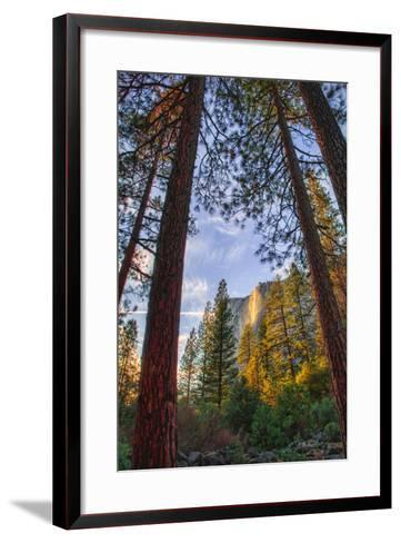 North View Through The Trees, Firefall, Horsetail Falls, Yosemite National Park-Vincent James-Framed Art Print