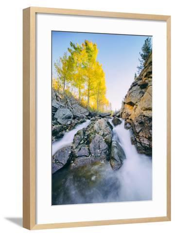 Autumn Flow at Bishop Canyon Creek, Eastern Sierras California-Vincent James-Framed Art Print