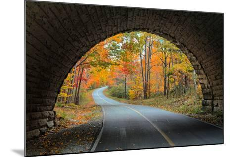 Tunnel Through Autumn, Bar Harbor, Maine, Acadia National Park-Vincent James-Mounted Photographic Print