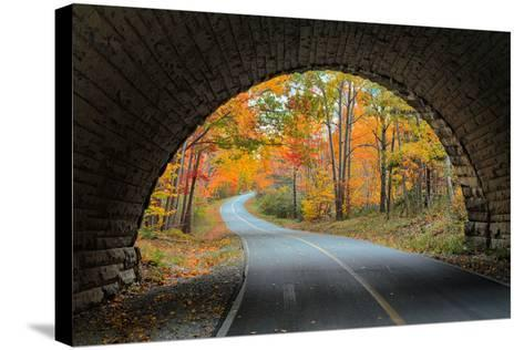 Tunnel Through Autumn, Bar Harbor, Maine, Acadia National Park-Vincent James-Stretched Canvas Print