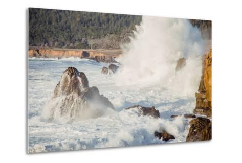 Wave Crash, Sonoma Coast, California State Parks, Coast Life-Vincent James-Metal Print