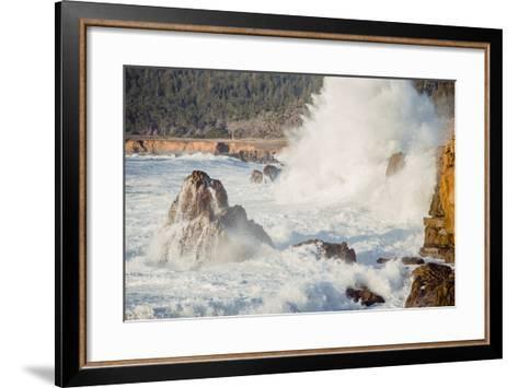 Wave Crash, Sonoma Coast, California State Parks, Coast Life-Vincent James-Framed Art Print