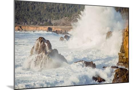 Wave Crash, Sonoma Coast, California State Parks, Coast Life-Vincent James-Mounted Photographic Print