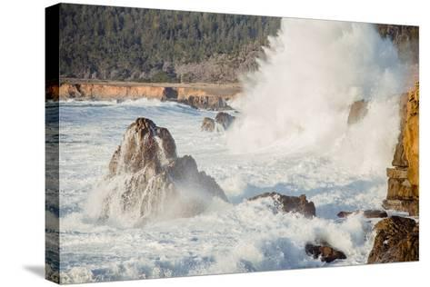 Wave Crash, Sonoma Coast, California State Parks, Coast Life-Vincent James-Stretched Canvas Print