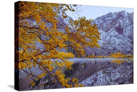 Autumn Reflections Lakeside, Convict Lake Mammoth California-Vincent James-Stretched Canvas Print