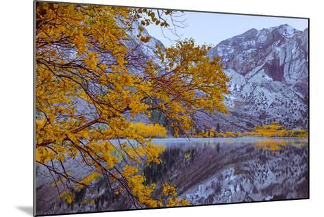 Autumn Reflections Lakeside, Convict Lake Mammoth California-Vincent James-Mounted Photographic Print
